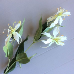 White Gloriosa Lily Stem