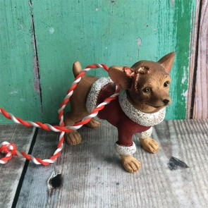 Dog Chihuahua in Coat Decoration