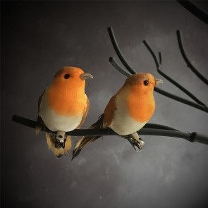 Set of Two Robin Clip On Decoration