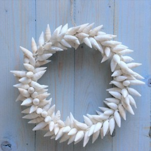 White Turret Shell Nautical Wreath