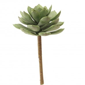 Green Succulent Plant Pick - Small