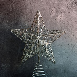 Silver Sparkly Star Christmas Tree Topper
