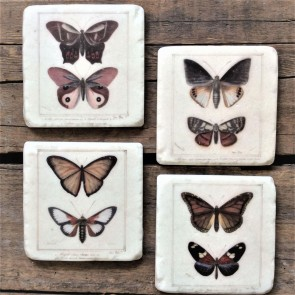 Butterfly Coasters - Set of Four