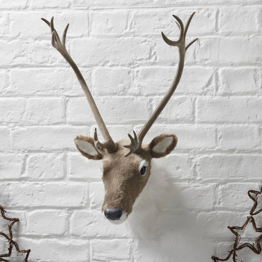 large wall mounted reindeer stag head
